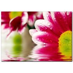 Suya Düşen Çiçekler Temalı Kanvas Tablo