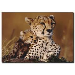 Leopar ve Yavrusu Temalı Kanvas Tablo