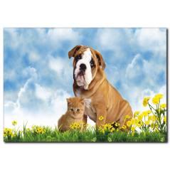 Kedi Köpek Dostluğu Kanvas Tablo