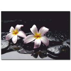 Huzur Çiçeği Temalı Kanvas Tablo