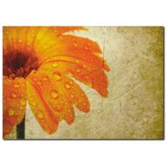 Eskitilmiş Görünümlü Çiçek Detaylı Kanvas Tablo
