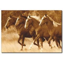 Kahverengi Atlar Temalı Kanvas Tablo