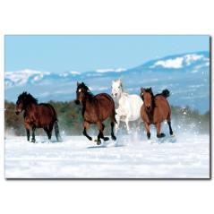 Koşan Atlar Temalı Kanvas Tablo