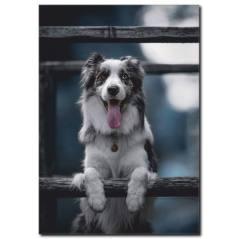 Sevimli Köpek Temalı Kanvas Tablo