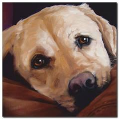 Güzel Köpek Yağlı Boya Tablo