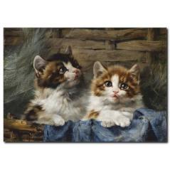 Sevimli Kedicikler Yağlı Boya Tablo