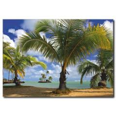 Palmiye Ağaçları Temalı kanvas Tablo