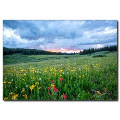 İlkbahar Manzaralı Kanvas Tablo