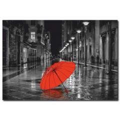Kırmızı Şemsiye Kanvas Tablo