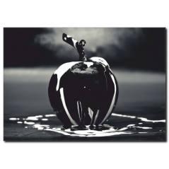 Siyah Elma Kanvas Tablo