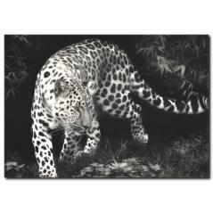Siyah Beyaz Leopar Kanvas Tablo