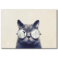 Gözlüklü Kedi Siyah Beyaz Tablo