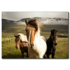 Dağlar ve Atlar Kanvas Tablo