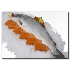 Somon Balığı Temalı Kanvas Tablo