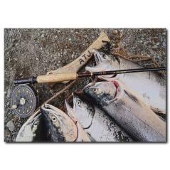 Somon Balığı Görselli Kanvas Tablo