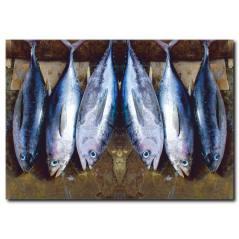 Balık Görselli Kanvas Tablo
