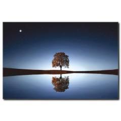 Suya Yansıyan Ağaç Manzarası Kanvas Tablo