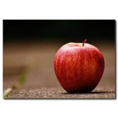 Kırmızı Elma Kanvas Tablo