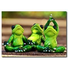 Yoga Yapan Kurbağalar Temalı Tablo