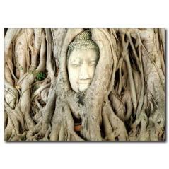 Ağaçta Yoga Yapan Rahip Figür Kanvas Tablo