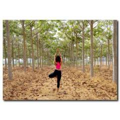 Ormanda Yoga Kanvas Tablo