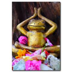 Yogacı Kurbağa Temalı Kanvas Tablo